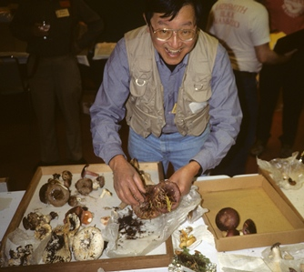 Ben Woo with his Russulas