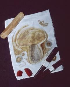 Myco-Stix drawing on silk