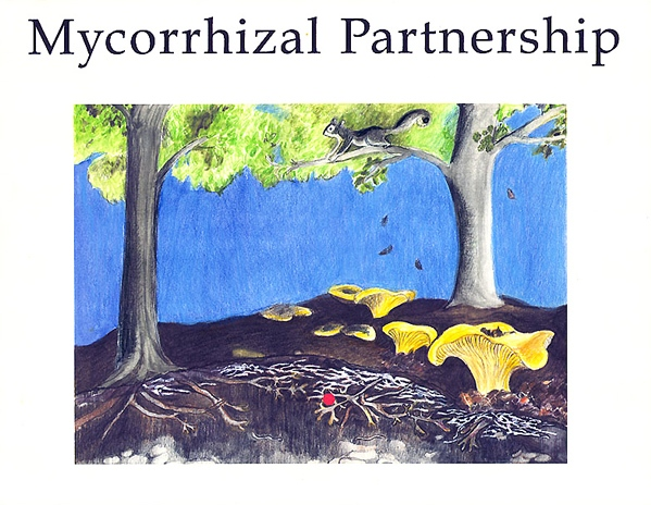 Mycorrhizal Partnerships