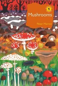 Mushrooms, The natural and human world of British Fungi