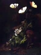 Carl Wilhelm de Hamilton, butterfly