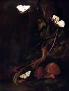 Carl Wilhelm de Hamilton red mushroom